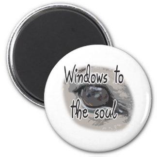 Horse's Eye - Windows To The Soul Fridge Magnets