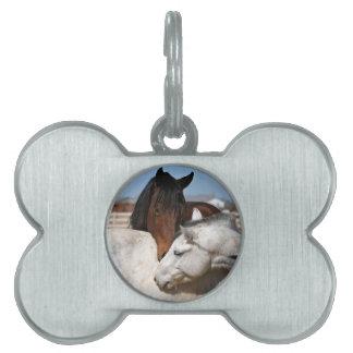 horses farm ranch equine western sports love pet tag