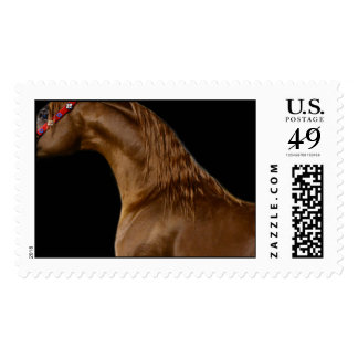horses farm ranch equine western sports love postage stamp