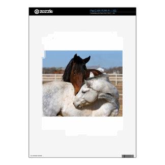 horses farm ranch equine western sports love skin for iPad 2