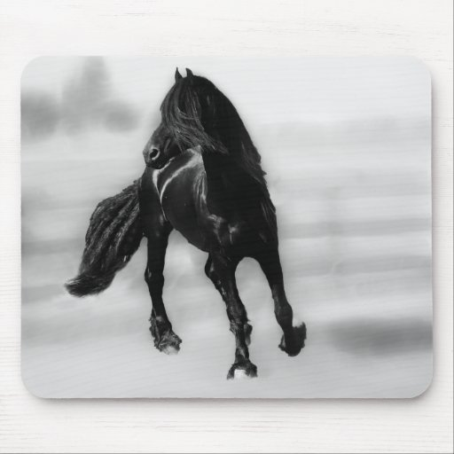 Horses glancing sideways mouse pads