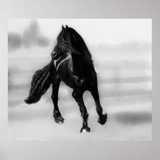 Horses glancing sideways poster
