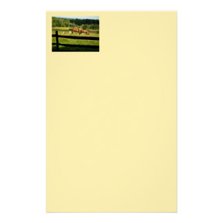 Horses Graze In Morn Stationery