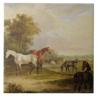 Horses Grazing: A Grey Stallion grazing with Mares Ceramic Tile