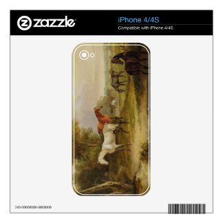 Horses Grazing: A Grey Stallion grazing with Mares Decals For iPhone 4