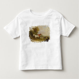 Horses Grazing: A Grey Stallion grazing with Mares T Shirt