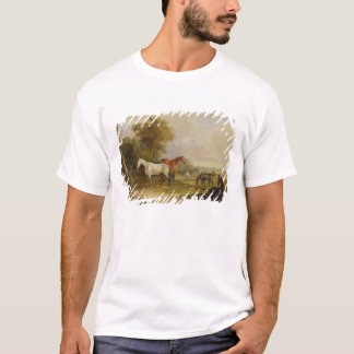 Horses Grazing: A Grey Stallion grazing with Mares T-Shirt