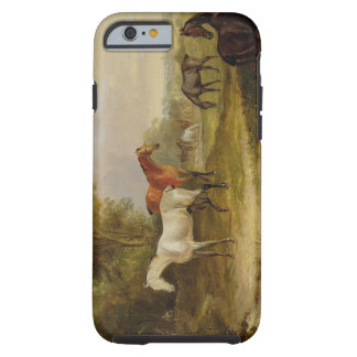 Horses Grazing: A Grey Stallion grazing with Mares Tough iPhone 6 Case