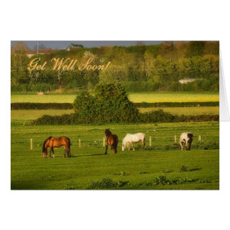 Horses grazing at Bower Hinton, Get Well Soon Card
