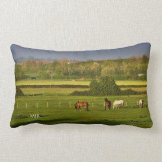 Horses grazing at Bower Hinton - Monogram Lumbar Pillow