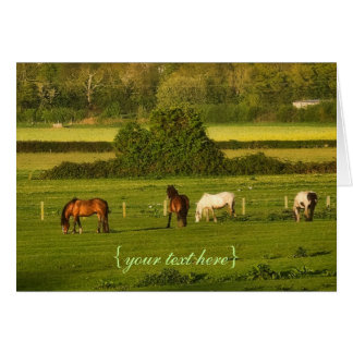 Horses grazing at Bower Hinton, Somerset Card
