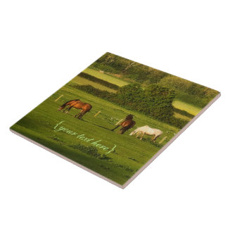 Horses grazing at Bower Hinton, Somerset Large Square Tile