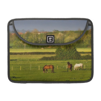Horses grazing at Bower Hinton, Somerset Sleeve For MacBook Pro