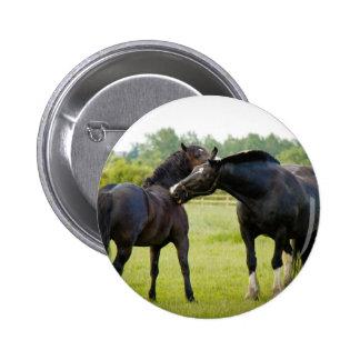 Horses  Grazing Button Badge