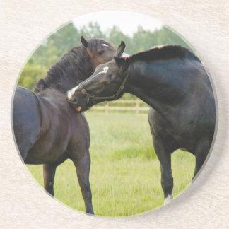 Horses  Grazing Coaster