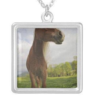 Horses grazing in meadow, Cades Cove, Great 2 Square Pendant Necklace