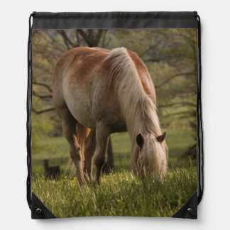 Horses grazing in meadow, Cades Cove, Great 3 Drawstring Bag