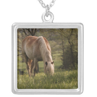 Horses grazing in meadow, Cades Cove, Great 3 Silver Plated Necklace
