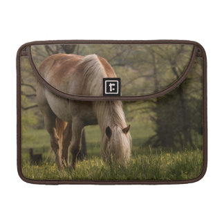 Horses grazing in meadow, Cades Cove, Great 3 Sleeve For MacBooks