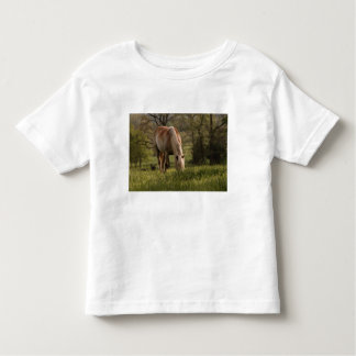 Horses grazing in meadow, Cades Cove, Great 3 Toddler T-shirt