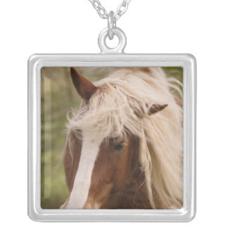 Horses grazing in meadow, Cades Cove, Great Silver Plated Necklace