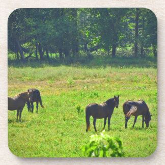 Horses Grazing in The Green Pasture Coasters