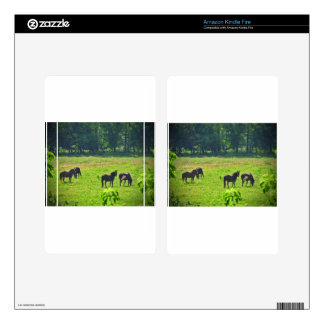 Horses Grazing in The Green Pasture Kindle Fire Skins