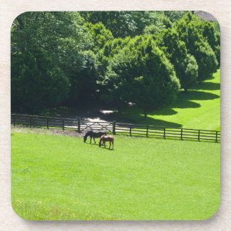 Horses grazing in Yorkshire Coasters
