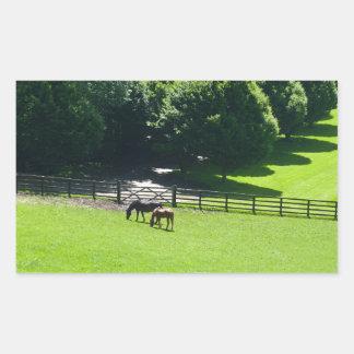 Horses grazing in Yorkshire Rectangular Sticker
