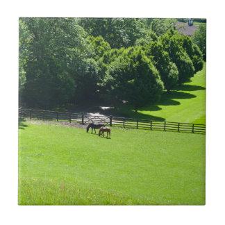 Horses grazing in Yorkshire Ceramic Tiles