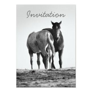"""Horses Grazing Invitation 5"""" X 7"""" Invitation Card"""