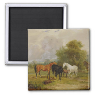 Horses Grazing: Mares and Foals in a Field (oil on Magnet