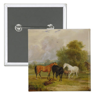 Horses Grazing: Mares and Foals in a Field (oil on Pinback Button