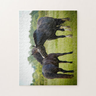 Horses  Grazing Puzzle/Jigsaw Puzzle