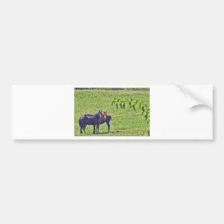Horses Hanging Around Bumper Sticker
