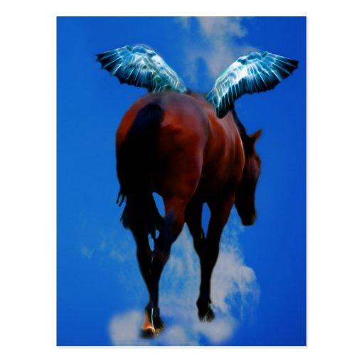 Horses have angels postcard