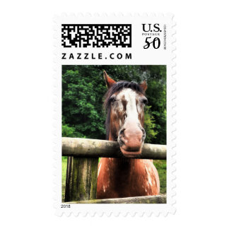 Horses Head Postage Stamp