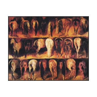 Horses' Hindquarters Canvas Print
