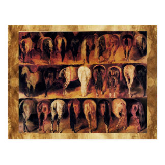 Horses' Hindquarters Postcard