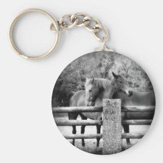 Horses Hugging - Horse Love Photograph Key Chains