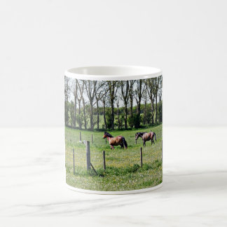 Horses in a Field Basic White Mug