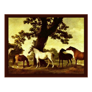 Horses In A Landscape By Stubbs George Postcard