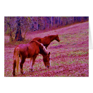 Horses in a lavender purple pink field, card