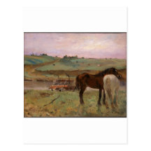 Horses in a Meadow Postcard