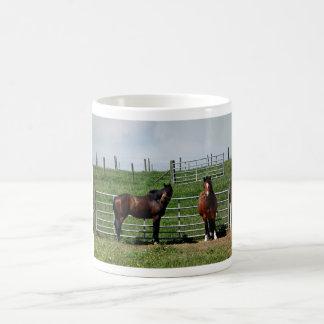 Horses in a Paddock Basic White Mug
