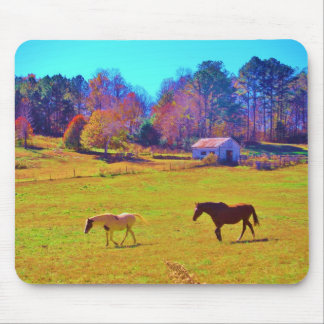 Horses in a Rainbow Colored Field Mouse Pad