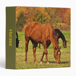 Horses in Autumn 3 Ring Binders