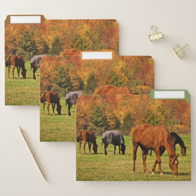 Horses in Autumn File Folder Set