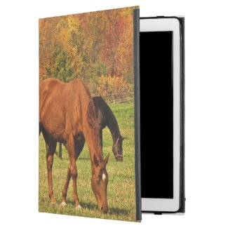 Horses in Autumn iPad Pro Case