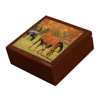 Horses in Autumn Jewelry Box